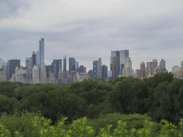 vistas de NY desde la terraza del MET