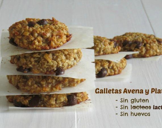 Galletas de avena sin gluten