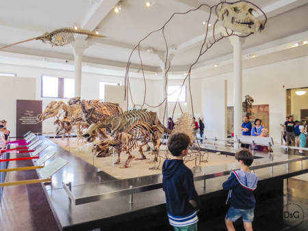 Visita al museo de Historia Natural con niños en Nueva York